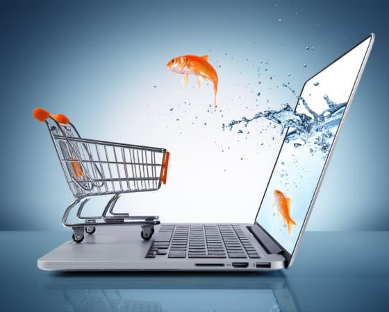 WUNDERY — Das einfache Shopsystem
