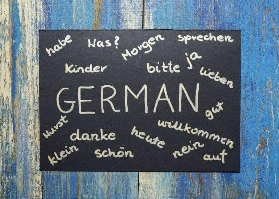 Leichte Sprache, Einfache Sprache – zu viele Nutzer?